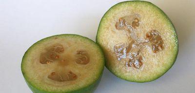 Фейхоа - полезные свойства, польза и вред ягоды фейхоа