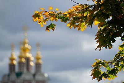 Какой будет осень 2015 в москве, средней полосе россии и крыму?