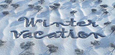 Когда начинаются зимние каникулы 2015