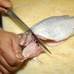 Обработка рыбы разных видов