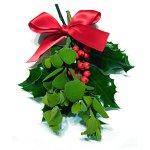 Рождественские традиции в разных странах. часть 2