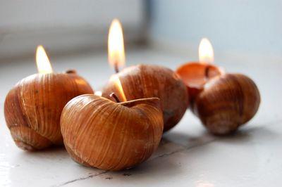 Самые красивые свечи из ракушек
