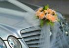Варианты проведения свадьбы
